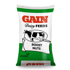 GAIN Boost Dairy Nuts 25kg