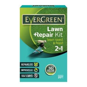 Evergreen Lawn Repair Kit 1kg