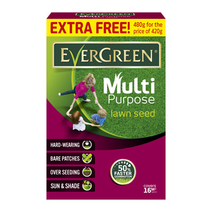 Evergreen Multi-purpose Grass Seed 420g