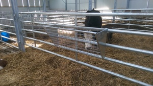 Hay Rack 4ft Mesh
