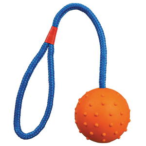 Rubber Ball on Rope