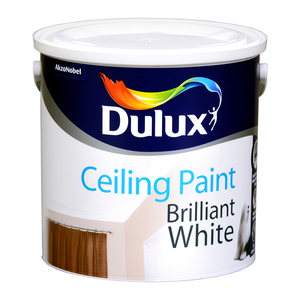 Dulux Ceiling Paint Brilliant White