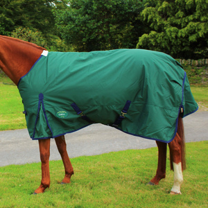 Cobra Winter Turnout Rug